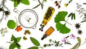 Productos Naturales: Beneficios para nuestra salud