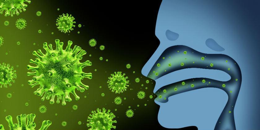Productos Naturales para la Gripe