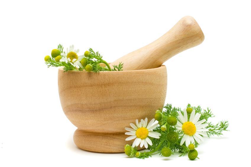 manzanilla medicinal